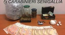 Ha in casa un supermarket