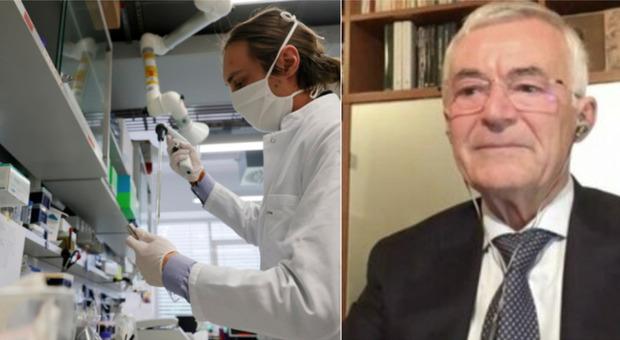 Anticorpi monoclonali, il professore Rappuoli annuncia: «La cura ai volontari entro la fine dell'anno»