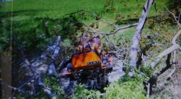 Montelparo, padre del vicesindaco muore schiacciato da un albero
