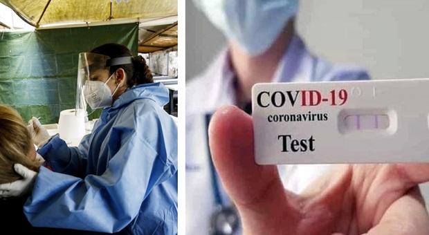 Coronavirus, picco di nuovi positivi nelle Marche: oggi sono 732. Ecco dove il virus colpisce di più /Il contagio nelle regioni