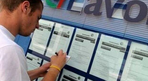 La tua segnalazione a Corriereadriatico.it «Navigator da stabilizzare? Le regole erano chiare dall'inizio»