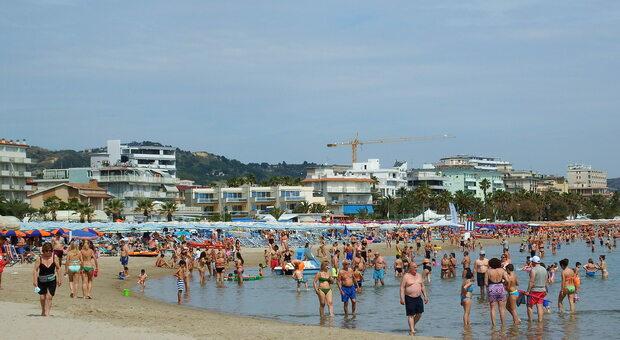 La Riviera come ai Tropici, si rivedono i delfini al largo. A terra invece raffica di multe sul lungomare