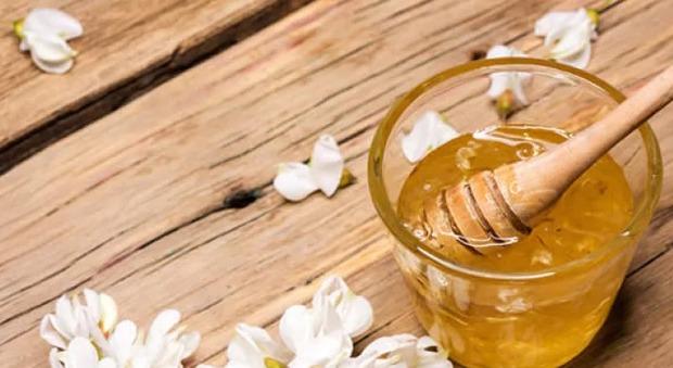 Il maltempo mette in ginocchio gli apicoltori: niente miele d'acacia