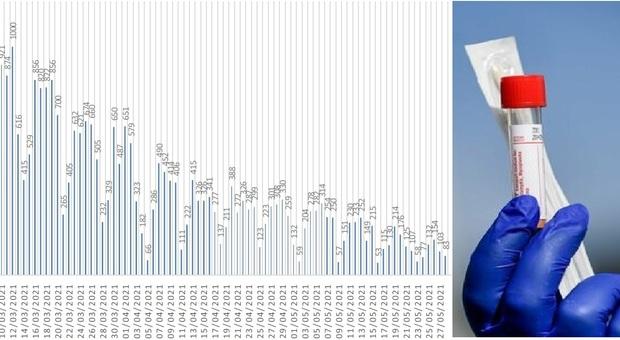 Coronavirus, nuova frenata dei positivi nelle Marche: sono 83 nelle ultime 24 ore/ Il trend dei contagi
