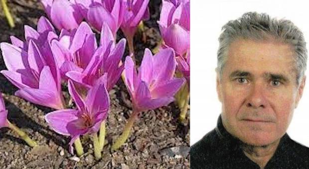 Il 62enne Valerio Pinzana e il fiore incriminato
