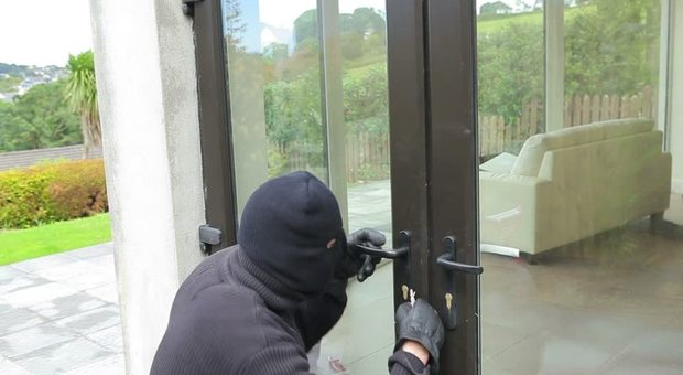 Cani storditi con lo spray al peperoncino e picchiati, poi i ladri prendono l oro e scappano per l'arrivo della proprietaria