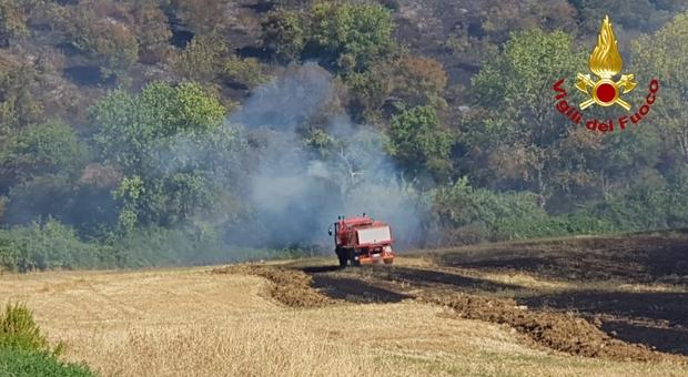Sterpaglie e vegetazione in fiamme: la superficie bruciata è di sette ettari