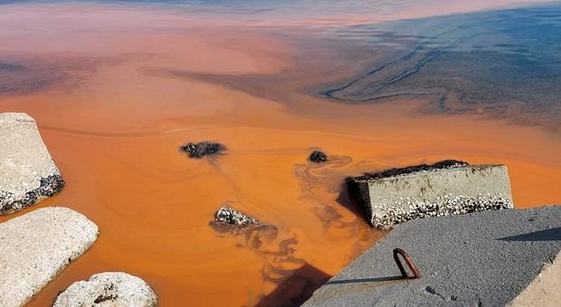 Zona rossa e il mare si tinge arancione: sconcerto e stupore al porto. Ma non c'è niente di tossico