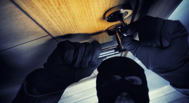 Raffica di furti nei negozi: i due ladri incastrati dai video delle telecamere