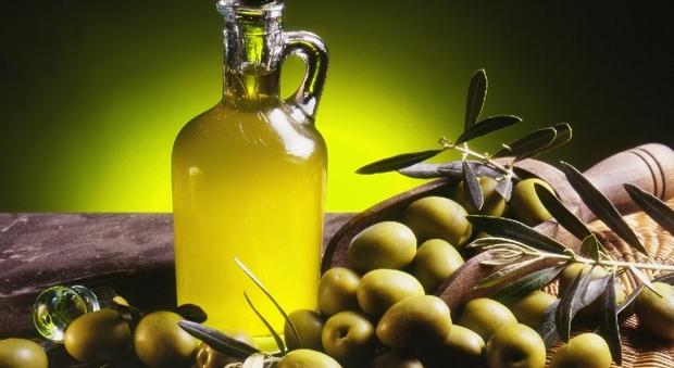 L'olio d'oliva delle Marche ottiene dall'Unione Europea il marchio Igp