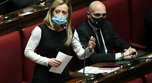 «Vacca e scrofa», docente universitario insulta Giorgia Meloni. Interviene anche Mattarella