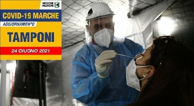 Coronavirus, resta basso il numero dei nuovi positivi: sono 12 in 24 ore nelle Marche