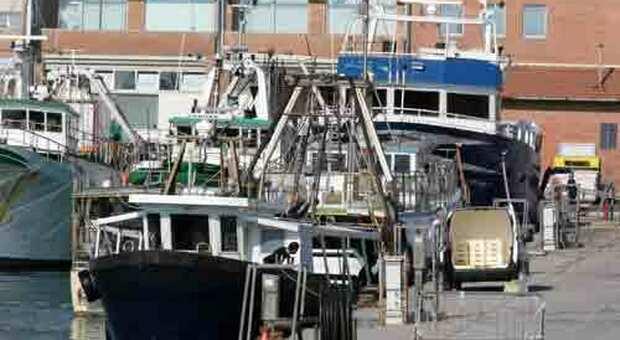 Pesca, il settore in ginocchio per il fermo e i tagli Ue