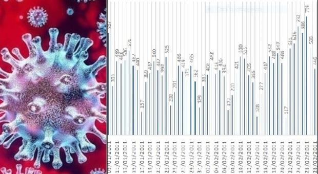 Coronavirus, nelle Marche 415 nuovi positivi in un giorno, continua a preoccupare l'Anconetano
