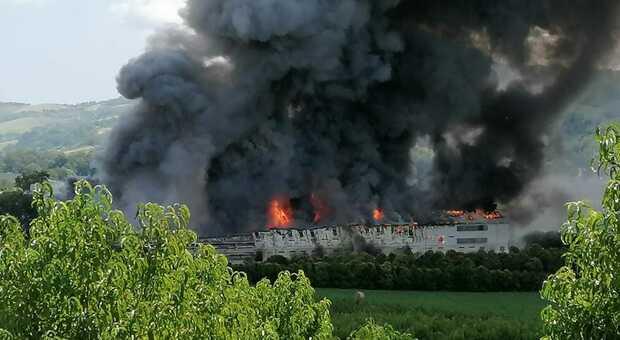 Furioso incendio devasta allevamento di polli. Enorme nube di fumo, appello di due sindaci: «Tenete chiuse le finestre»