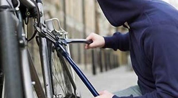 Ladro di biciclette inseguito dai poliziotti per le vie della città: bloccato e denunciato per furto