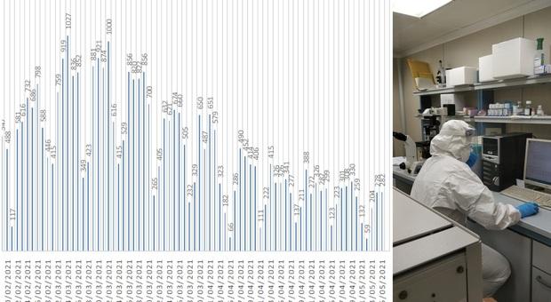 Coronavirus, una provincia riaccende l'allarme: 282 nuovi positivi in un giorno nelle Marche/ Il trend del contagio