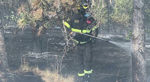 Uno dei vigili del fuoco impegnato nell'opera di spegnimento
