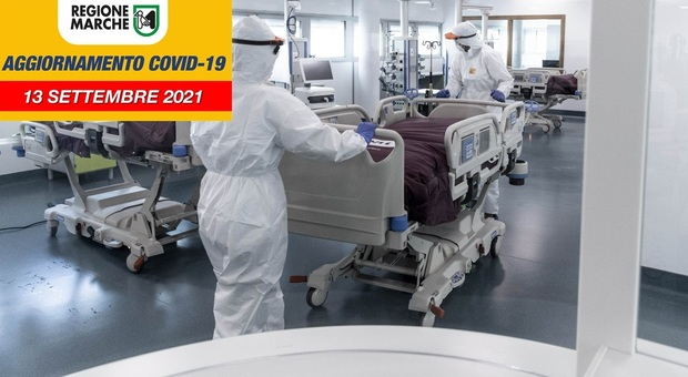 Coronavirus, soltano 16 nuovi positivi nelle Marche ed una provincia a zero, ma con pochissimi tamponi testati