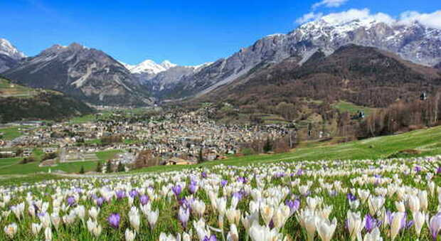 Cosa vedere in Valtellina: sette tappe alla scoperta delle Dop Casera e Bitto, i re dei formaggi