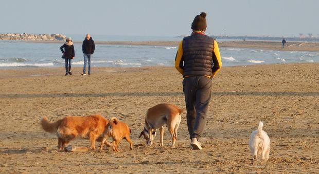 Padroni e cani a passeggio nella spiaggia della Riviera