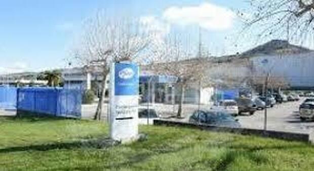 Lo stabilimento della Pfizer di Ascoli Piceno
