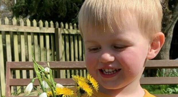 «Mamma ho mal di pancia», bimbo di 3 anni si sente male e muore dopo 48 ore