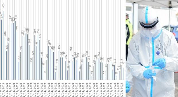 Coronavirus, nelle Marche 176 nuovi positivi in un giorno: più della metà in una sola provincia