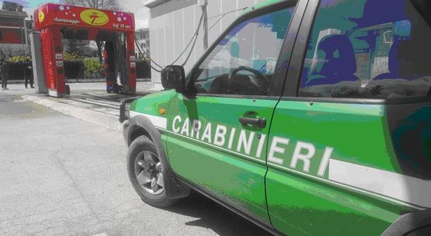 Accertamenti da parte dei carabinieri forestali
