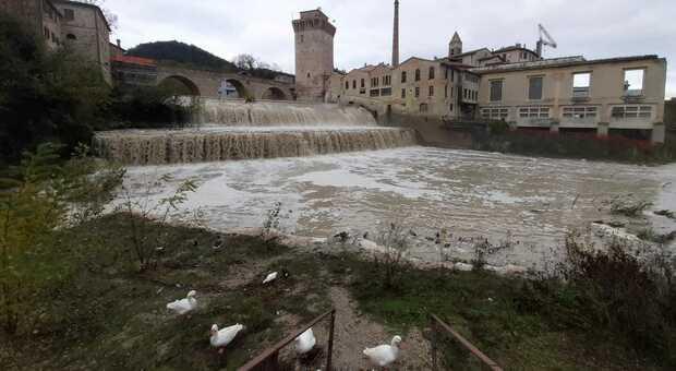 La schiuma nelle cascate di Fermignano
