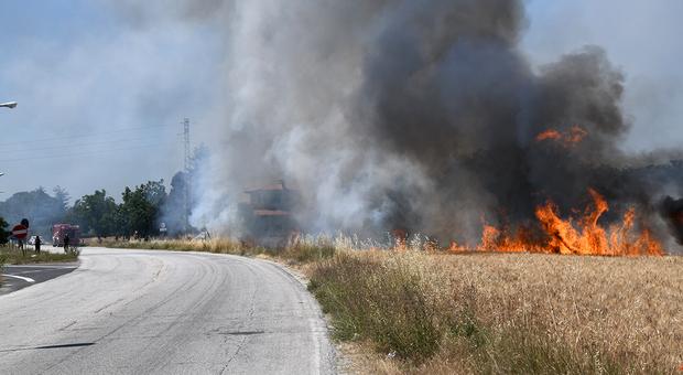 Le fiamme nella zona di Bellocchi di Fano