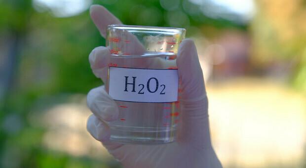 Covid, «l'acqua ossigenata neutralizza il virus». I risultati di uno studio italiano