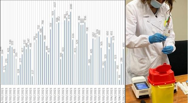 Coronavirus, nelle ultime 24 ore 490 nuovi positivi delle Marche: il contagio corre nel nord della Regione
