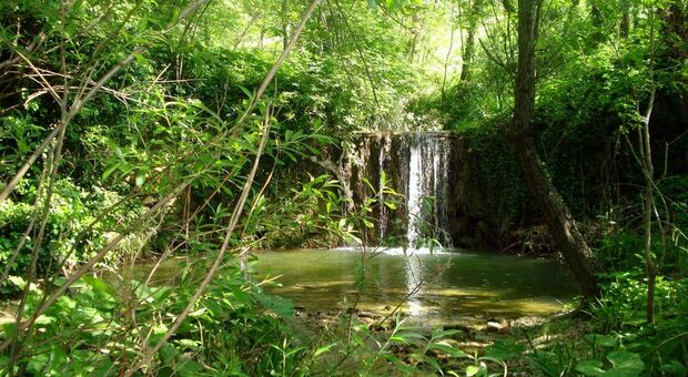 Una delle cascatelle lungo il sentiero del granchio nero a Castelplanio