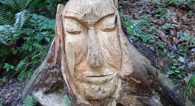Colmen sculture nel bosco