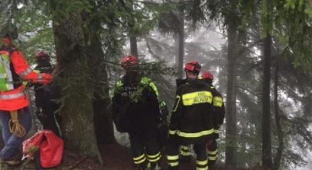 Vigili del fuoco in un bosco. Foto tratta da Internet