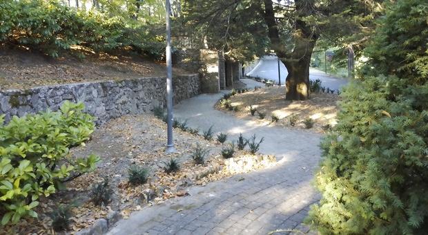 Il giardino danneggiato dai vandali