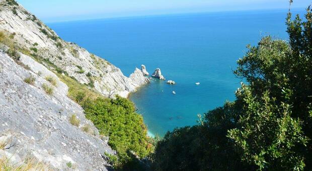 I tanti benefici dell area marina protetta e la contrarietà della sindaca Mancinelli