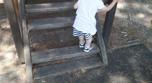 Vandali nel parco, distrutti i giochi dei bambini: l'ira dei residenti