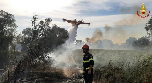 Il Canadair e i vigili del fuoco impegnati nello spegnimento del rogo