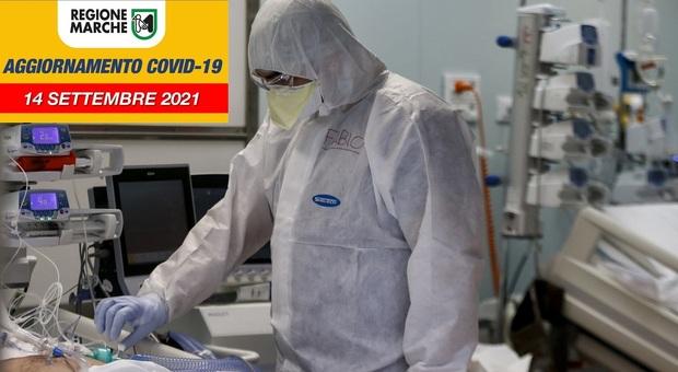 Covid, nelle Marche 119 positivi in un giorno: le province dove il contagio accelera di nuovo