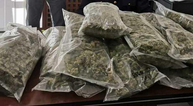 San benedetto, cinque chili di marijuana nel trolley ma niente materiale per le dosi: si indaga sui contatti del grossista dello spaccio