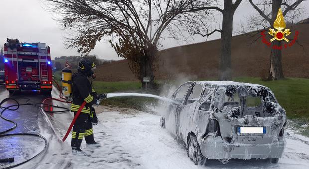 Auto in fiamme lungo la provinciale 2, intervento dei vigili del fuoco