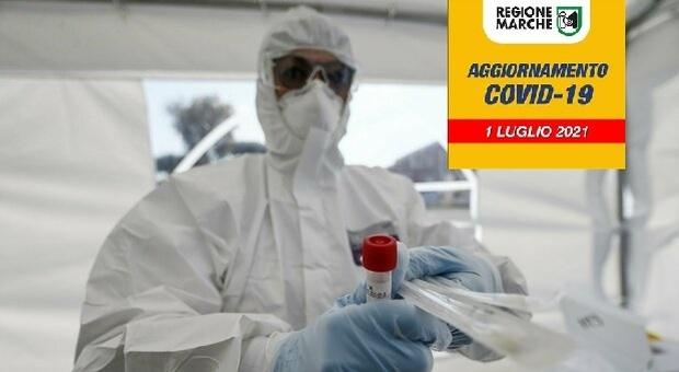 Coronavirus, allarme focolai nelle Marche: 46 nuovi positivi in un giorno. Boom in una provincia