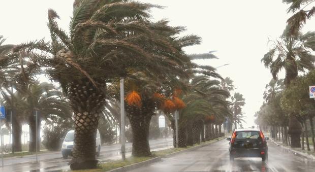 Allerta Protezione Civile: in arrivo venti di tempesta oltre i 100 km/h