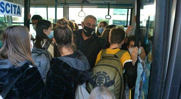 Tundo, mezzo forfait: 17 comuni marchigiani finiscono nel caos per i bus della scuola
