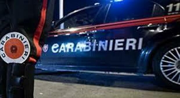L'operazione è stata effettuata dai carabinieri di Urbino