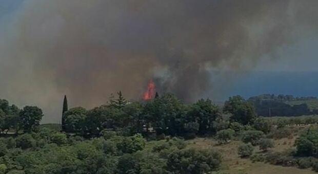 L'incendio nelle campagne di Campofilone
