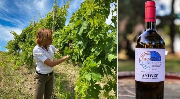 Pesaro, un vino da medaglia d'oro: il bianchello Andy 19 di Fiorini trionfa nel concorso di Londra