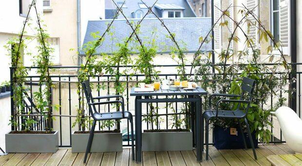 Un balcone con piante che riparano dalla vista dei vicini